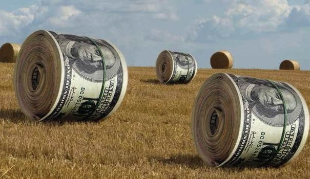 The legalized corruption in the agrarian sector of Ukraine