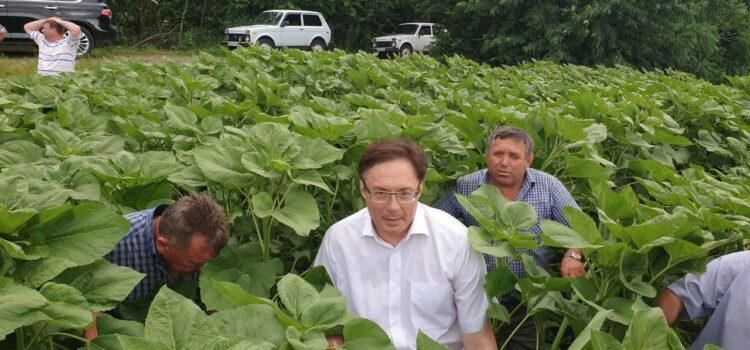 Рабочий визит в село Чернятка, Винницкой области