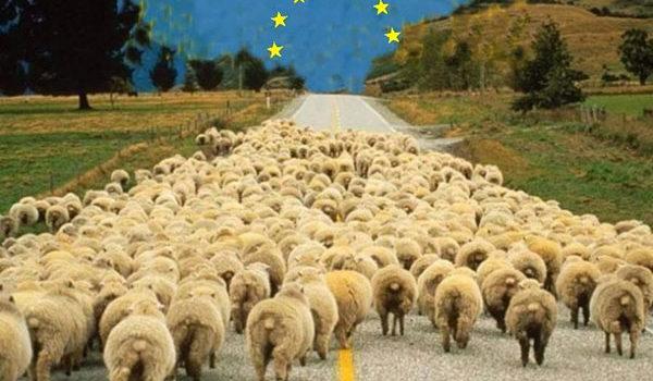 Ассоциация с ЕС? Отвечает ли украинская налоговая и аграрная политика требованиям ЕС